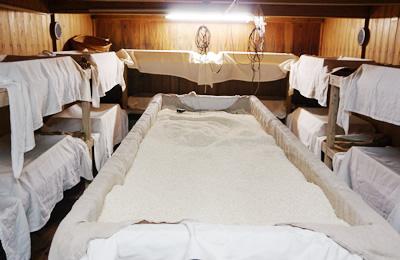 石蔵の麹室